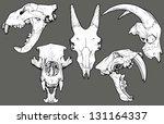 cráneo animal,oso,blanco y negro,colección,detallado,vista frontal,cabra,grupo,dibujado a mano,ilustración,aislado,león,mamíferos,boca abierta,antiguo