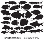 Vector Fish Silhouettes