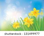 vector of daffodil flowers on... | Shutterstock .eps vector #131499977