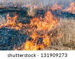 Fire In Dry Grass Natural...