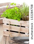 Fresh organic potted herbs in wooden crate on table with gardening tools - stock photo