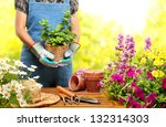 Gardener  Holding A Pot With...