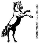 Horse Rearing Mustang Black An...