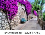 Vibrant flower draped pathway in Capri, Italy - stock photo
