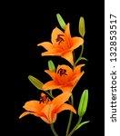 Three Orange Lillies On Black...