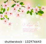 spring background with pink... | Shutterstock .eps vector #132976643