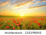 field with green grass and red... | Shutterstock . vector #133198043