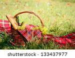 Picnic basket fool of fruits bread and wine with floral meadow at background - stock photo