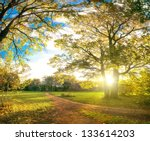 Autumn Park Natural Landscape