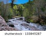 a river flows through a forest... | Shutterstock . vector #133845287