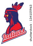 american,apache,cherokee,chief,college,feather,hat,head,high school,human,icon,indian,male,man,mascot
