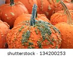 Orange Pumpkins  With Warts