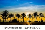 tropical beach with coconut... | Shutterstock . vector #134598773
