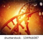 dna molecule is located in... | Shutterstock . vector #134966087
