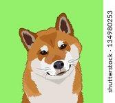 Shiba Inu  The Buddy Dog