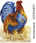blue yellow rooster a mail... | Shutterstock . vector #135201857