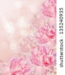 Beautiful bokhe pink background with wild roses. - stock photo
