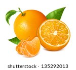 photo realistic vector... | Shutterstock .eps vector #135292013