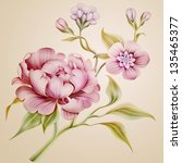 vintage fantasy peony spring flowers and leaves isolated - stock photo
