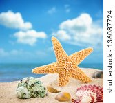 Sea star and colorful shells on coastline - stock photo