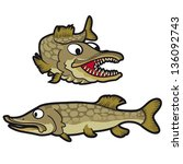 vector illustration of pike fish | Shutterstock .eps vector #136092743
