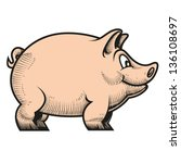 vector illustration of pig | Shutterstock .eps vector #136108697