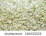 Stock photo white roses and white orchids background 136222223