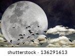 Flock Of Silhouette Birds...