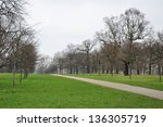 A lane in the park in early spring - stock photo