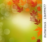 colorful autumn leaves... | Shutterstock . vector #136499477