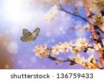 butterfly in ray of sunshine... | Shutterstock . vector #136759433