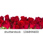 Stock photo border of fresh red garden roses isolated on white background 136844603