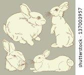 vector rabbit | Shutterstock .eps vector #137003957
