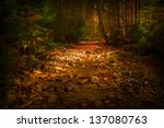 mystic forest with red leaves...   Shutterstock . vector #137080763
