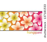 all purpose bright frangipani... | Shutterstock .eps vector #137181533