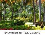Beautiful Tropical Garden With...