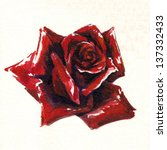 Single Beautiful Rose...