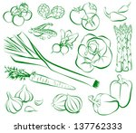 vegetables | Shutterstock .eps vector #137762333