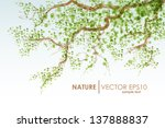 Abstract Natural Background....
