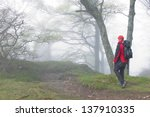 hiker at Black Forest in spring, Germany - stock photo
