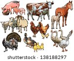 culture pets and animals living ... | Shutterstock .eps vector #138188297
