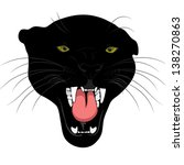 Panther  Black Cat