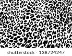 Black And White Background Of ...