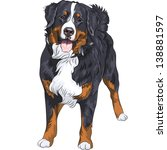 Vector Big Cute Dog Breed...