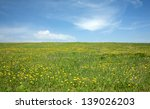 Landscape With Green Meadow...