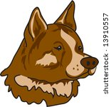 illustration of an akita dog | Shutterstock .eps vector #13910557