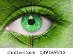 green eye close up and leaf... | Shutterstock . vector #139169213