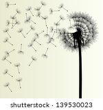 précédent,arrière-plan,noir,fleur d'oranger,soufflage,botanique,carte,pissenlit,délicat,dispersion,flotteur,flore,fleurons,fleur,tête de fleur