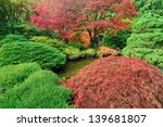 Colorful Autumn Japanese Maple...