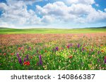 Spring Flower Meadow....